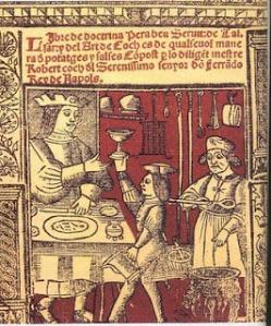 imatge-llibre-de-Sent-Soví
