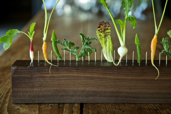 bhny-%22vegetables-on-the-fence%22-2-andre-baronowski-photographer-jpg