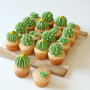 42 Cupcakes captus